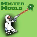 Mister Mould